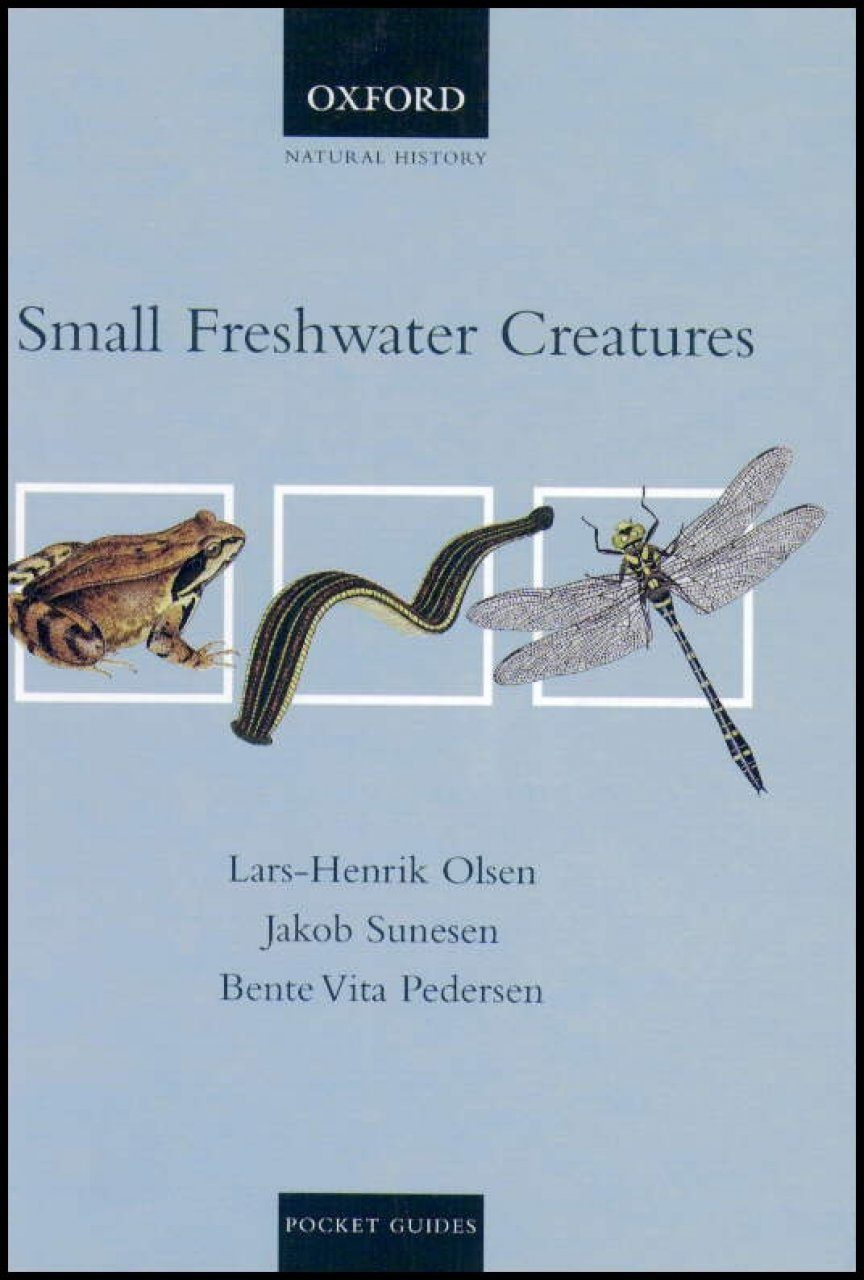 Small Freshwater Creatures