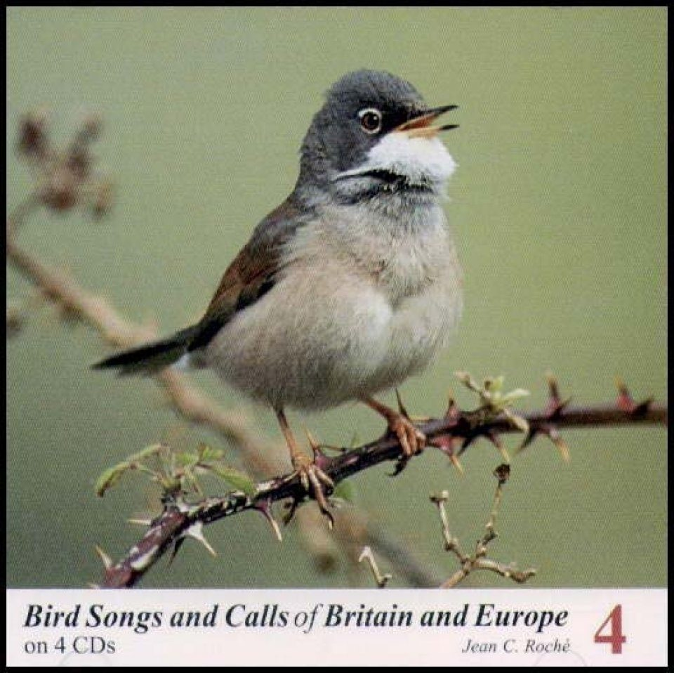 Bird Songs and Calls of Britain and Europe, Volume 4: Sylvia Warblers to Buntings