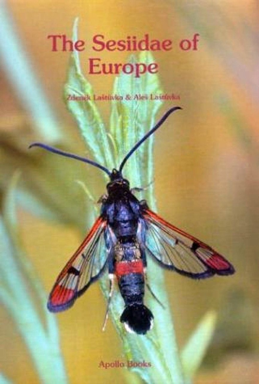 The Sesiidae of Europe