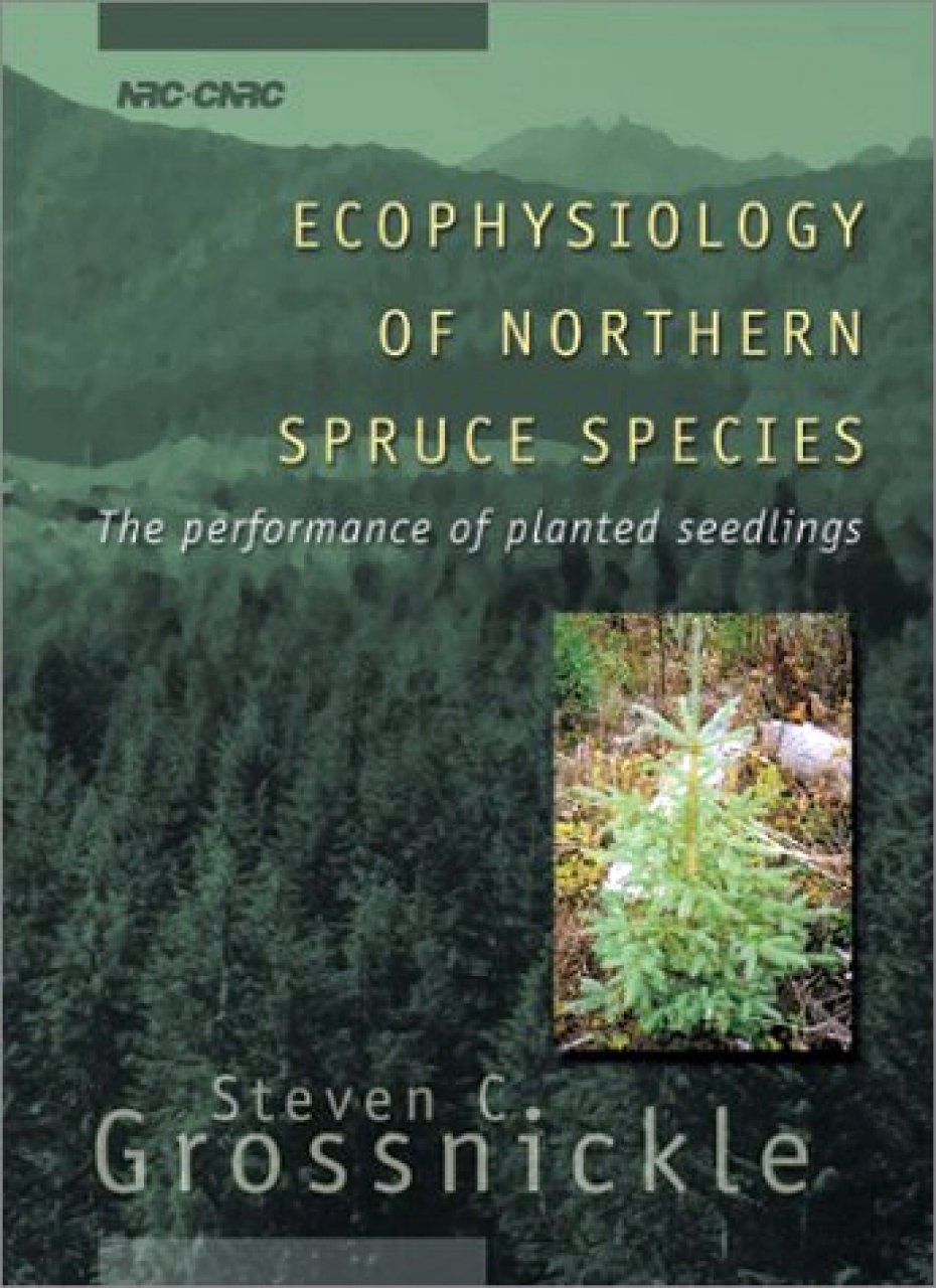Ecophysiology of Northern Spruce Species: