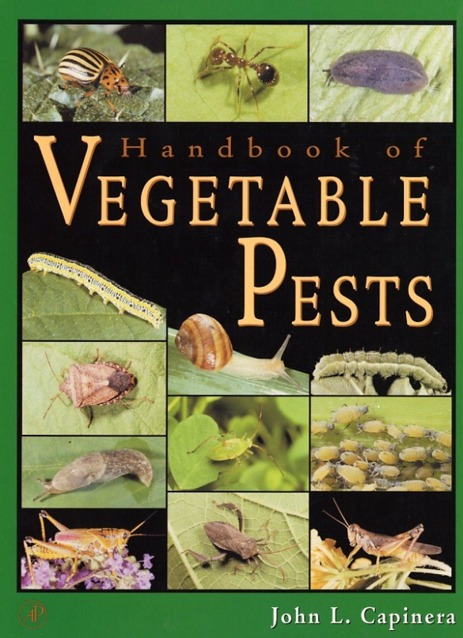 Handbook of Vegetable Pests