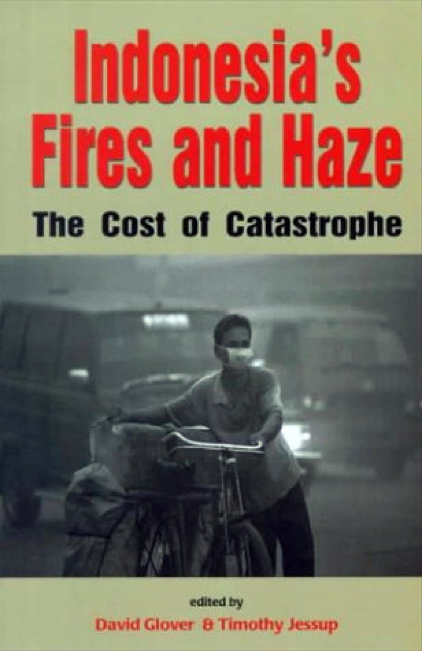 Indonesia's Fires and Haze