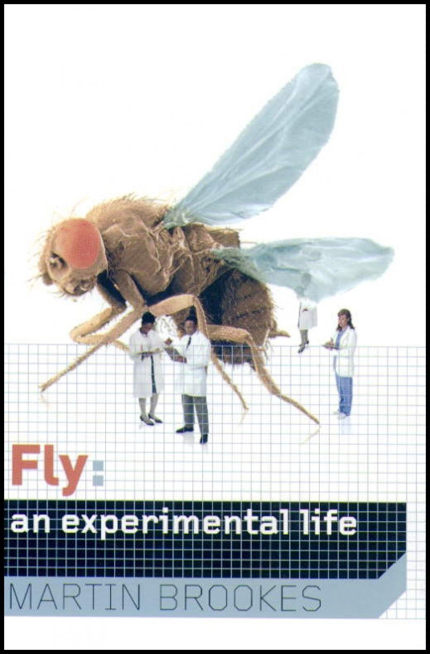 Fly: The Unsung Hero of Twentieth Century Science