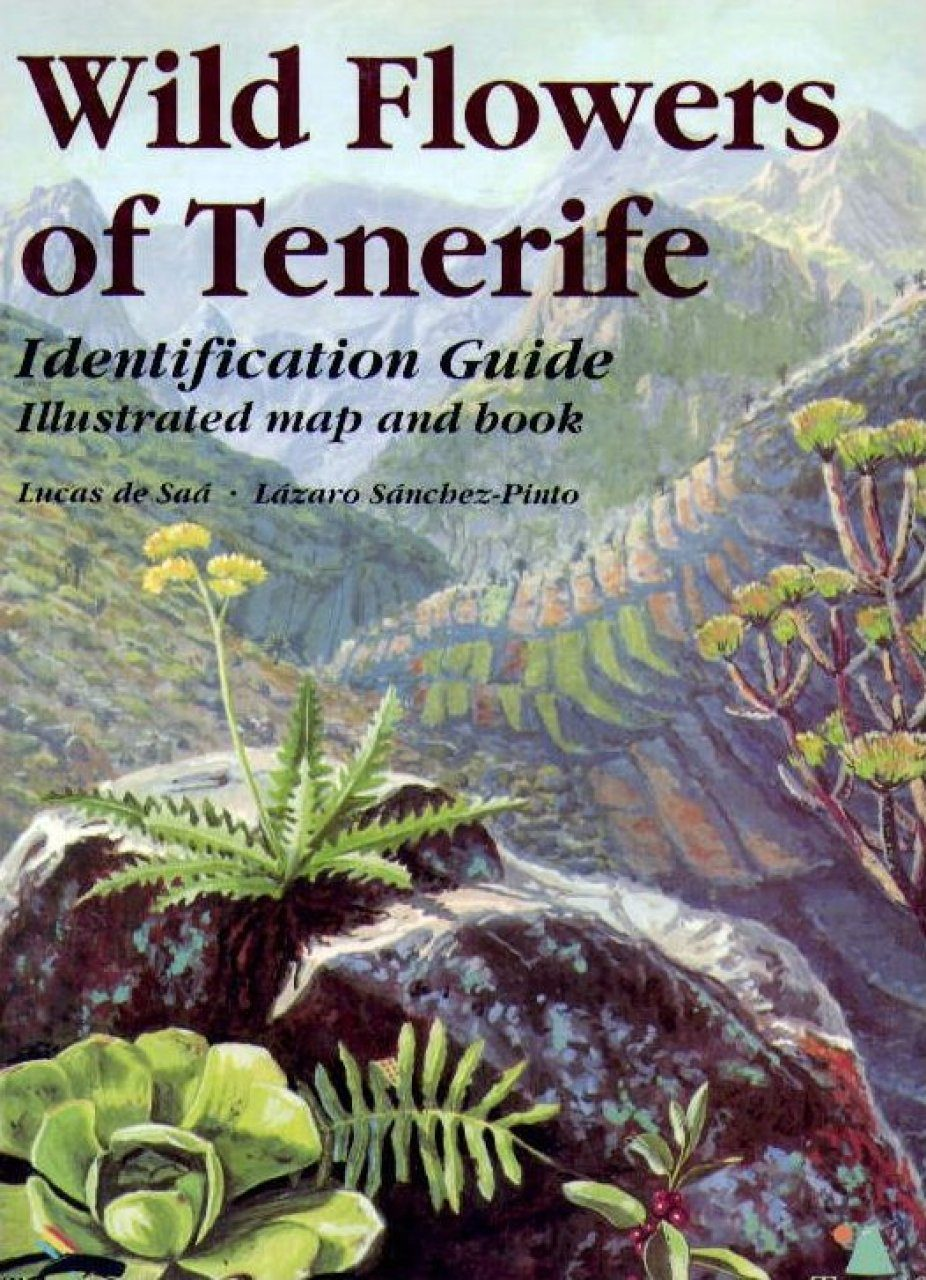 Wild Flowers of Tenerife: Identification Guide