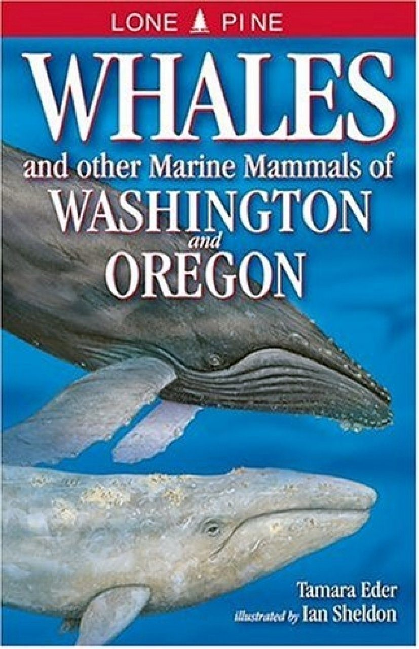 Whales and Other Marine Mammals of Washington and Oregon
