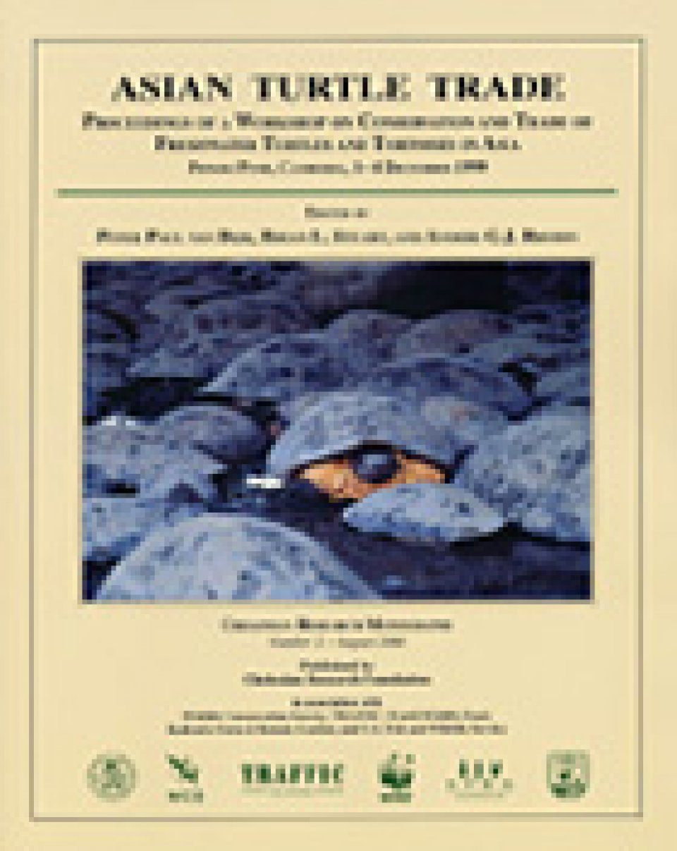 Asian Turtle Trade Turtles and Tortoises in Asia