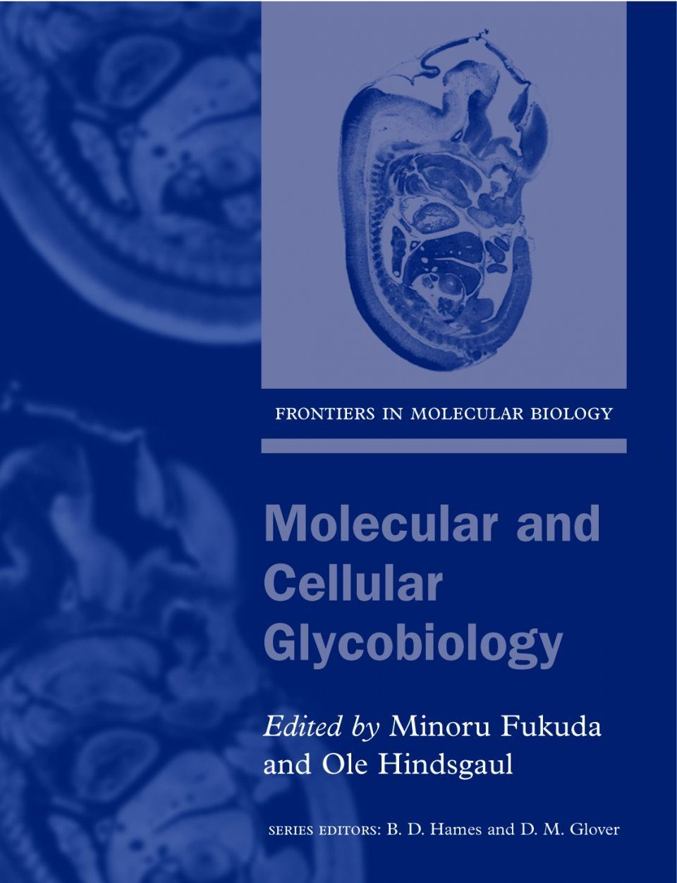 Molecular and Cellular Glycobiology