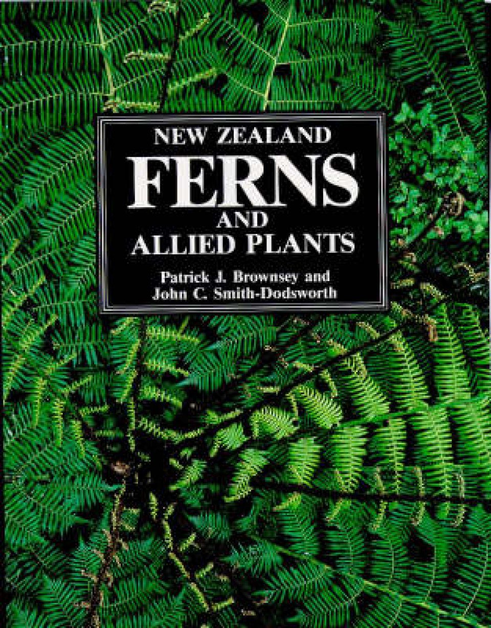 New Zealand Ferns and Allied Plants