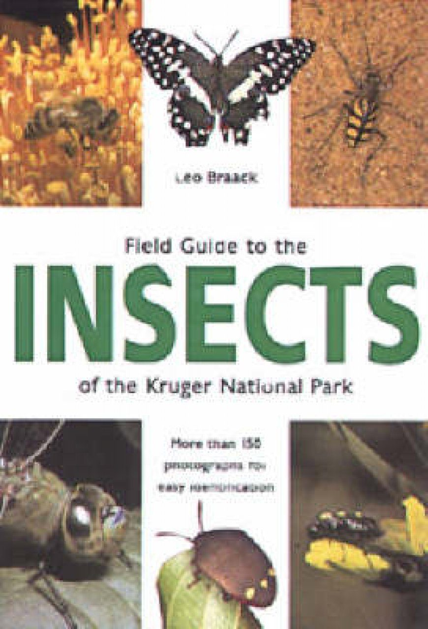 Field Guide to the Insects of the Kruger National Park