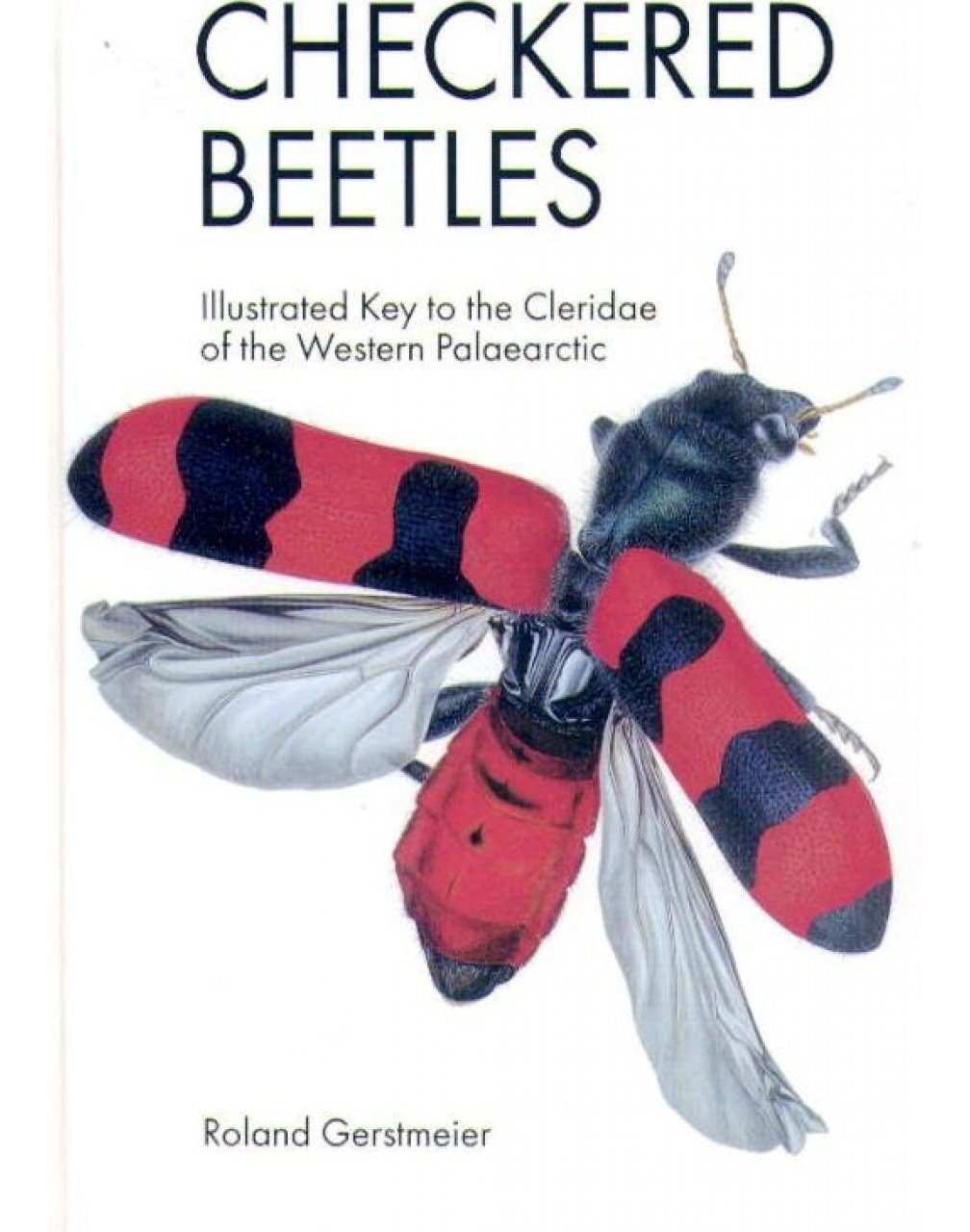 Checkered Beetles
