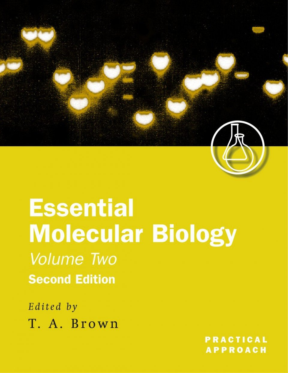 Essential Molecular Biology: A Practical Approach Volume 2