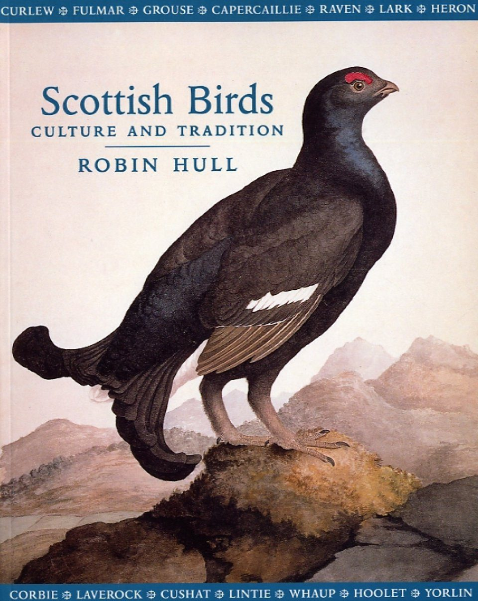 Scottish Birds