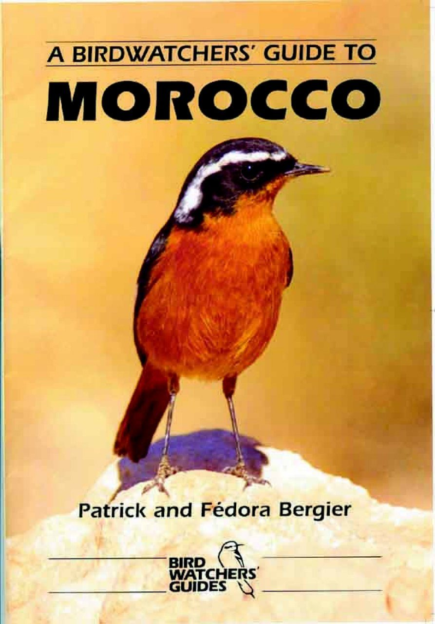 A Birdwatchers' Guide to Morocco