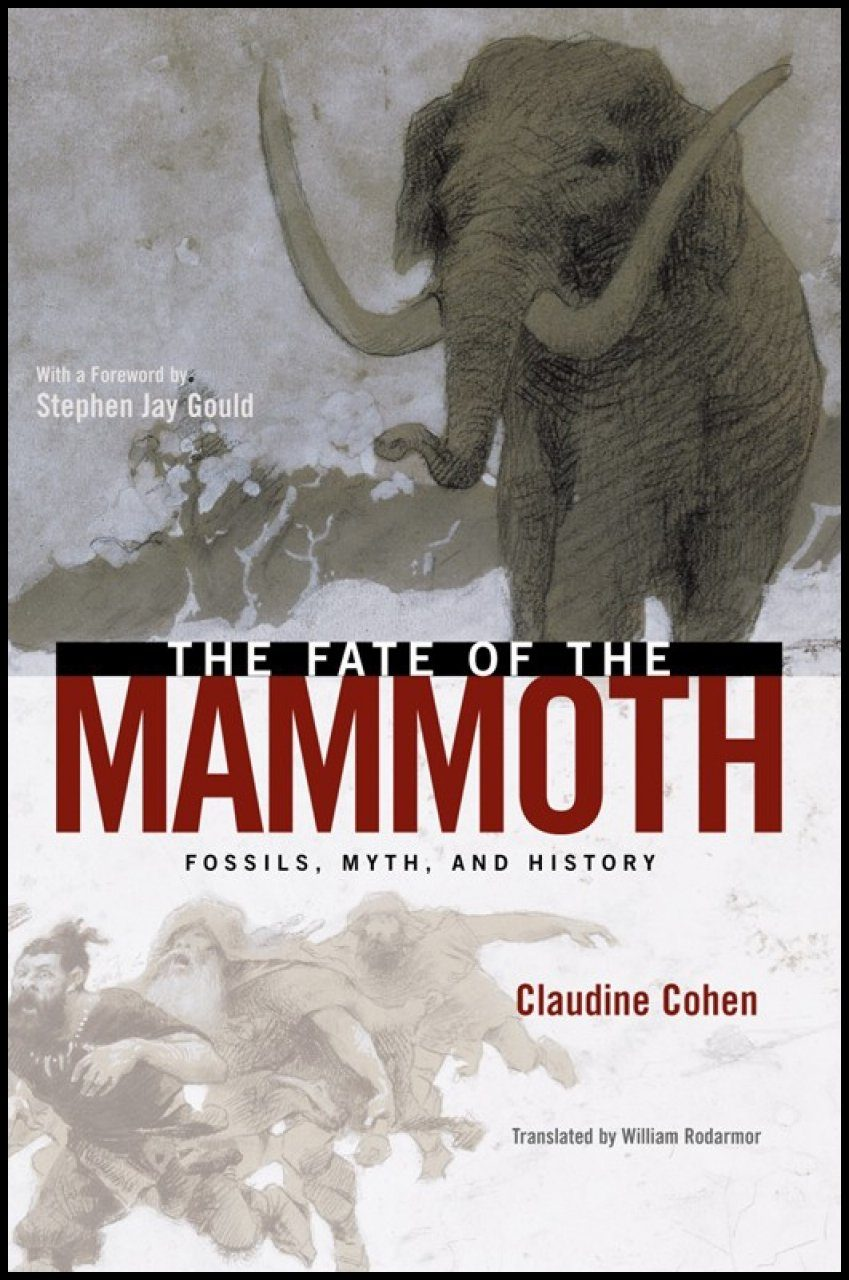 The Fate of the Mammoth