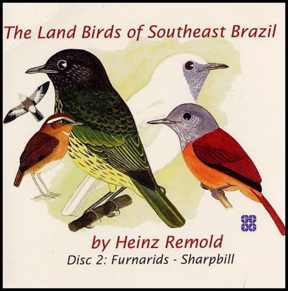 The Land Birds of Southeast Brazil, Disc 2: Furnarids - Sharpbill