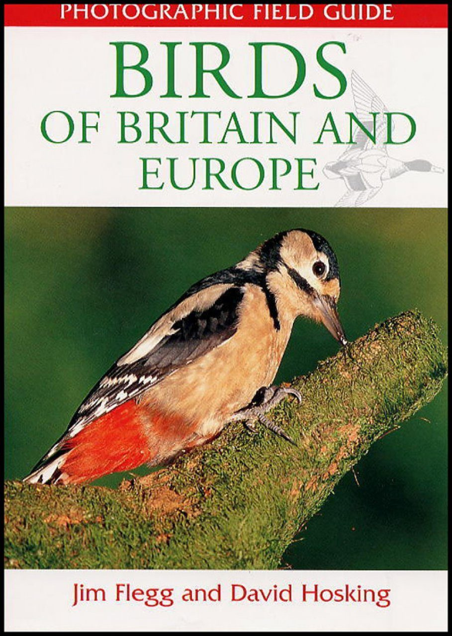 Photographic Field Guide: Birds of Britain and Europe