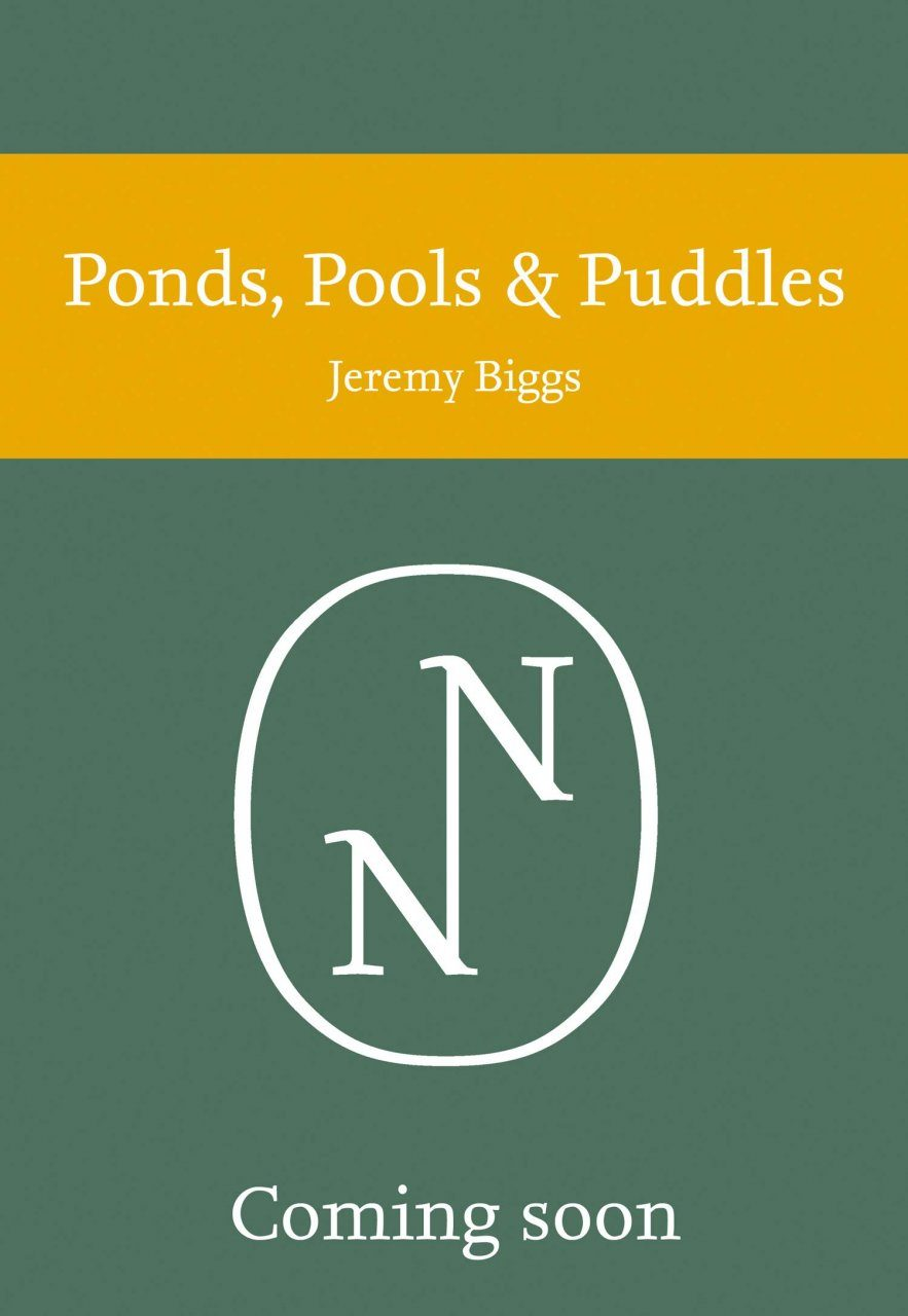 Ponds, Pools and Puddles