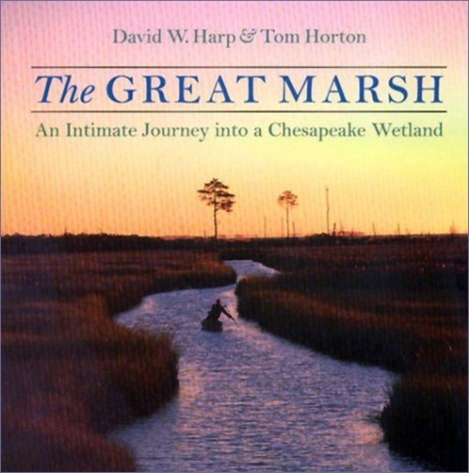 The Great Marsh