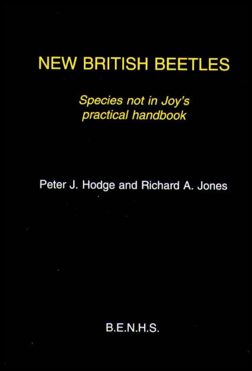 New British Beetles