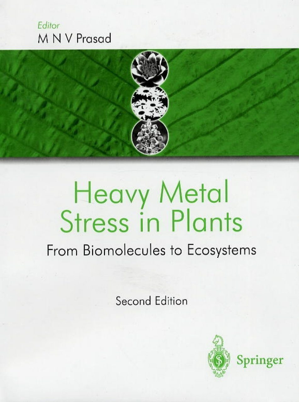 Heavy Metal Stress in Plants