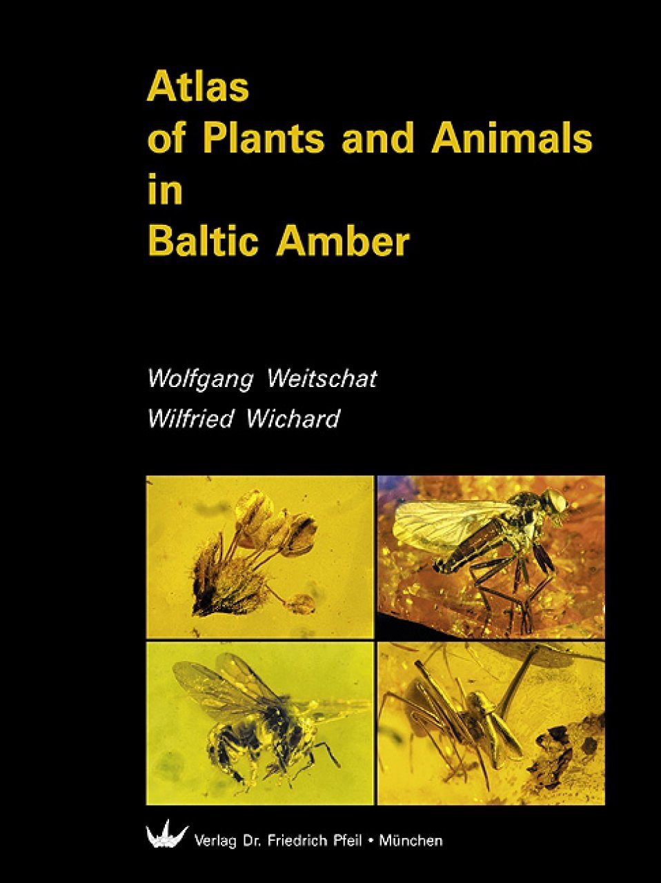 Atlas of Plants and Animals in Baltic Amber