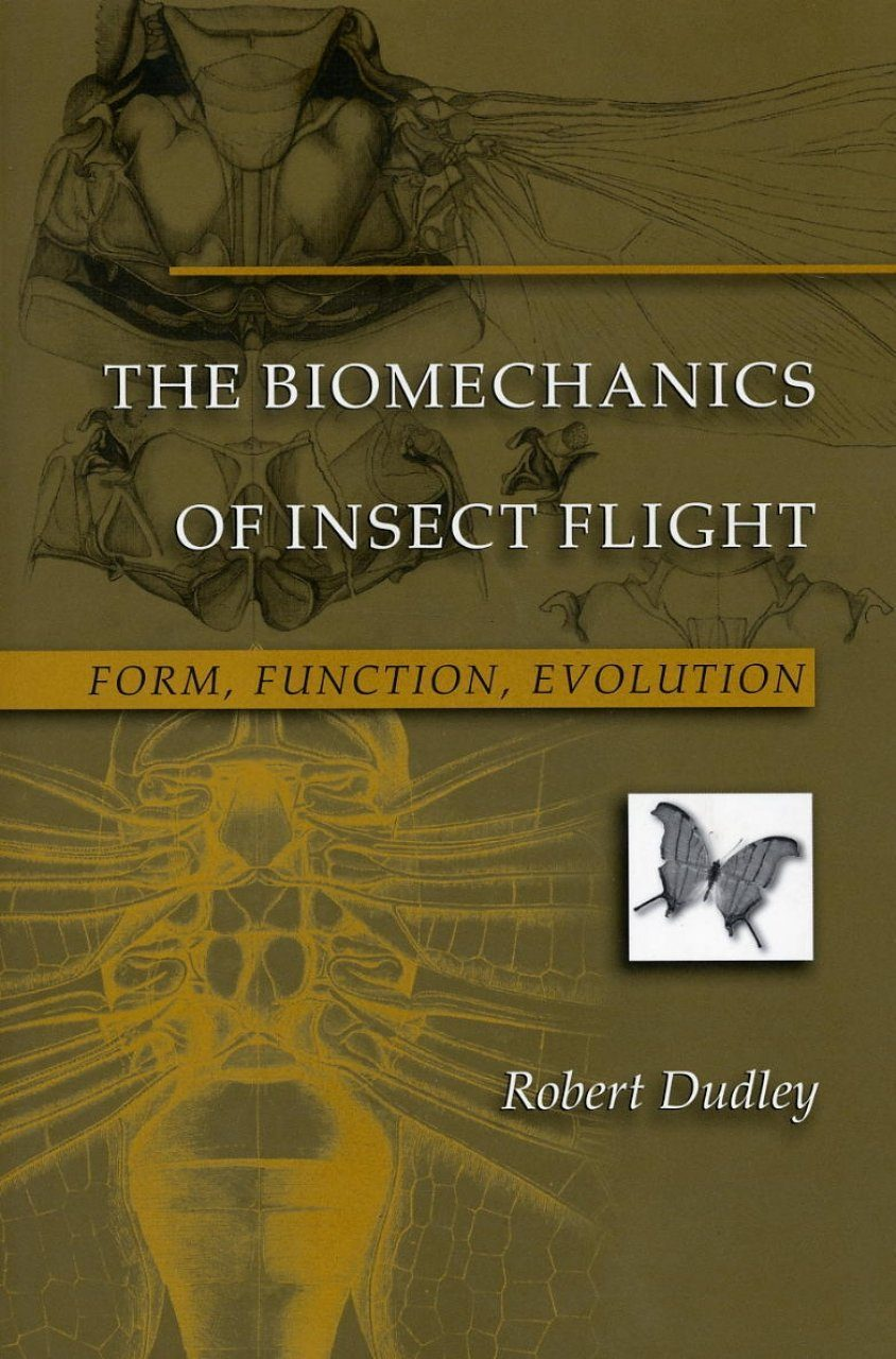 The Biomechanics of Insect Flight: Form, Function, Evolution ...