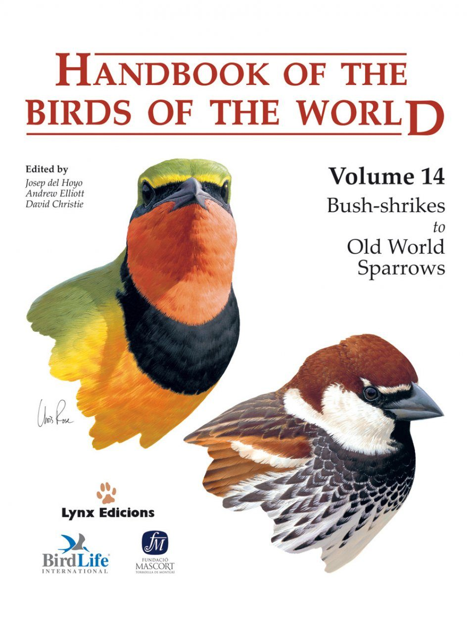 Handbook of the Birds of the World, Volume 14: Bush-Shrikes to Old World Sparrows