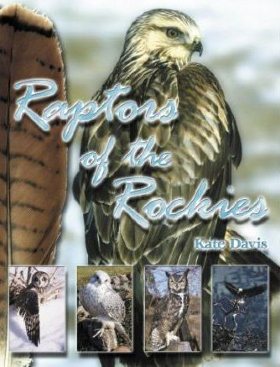 Raptors of the Rockies