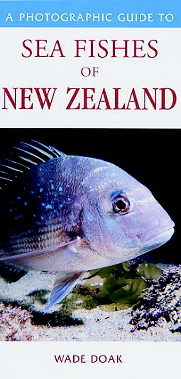 A Photographic Guide to Sea Fishes of New Zealand
