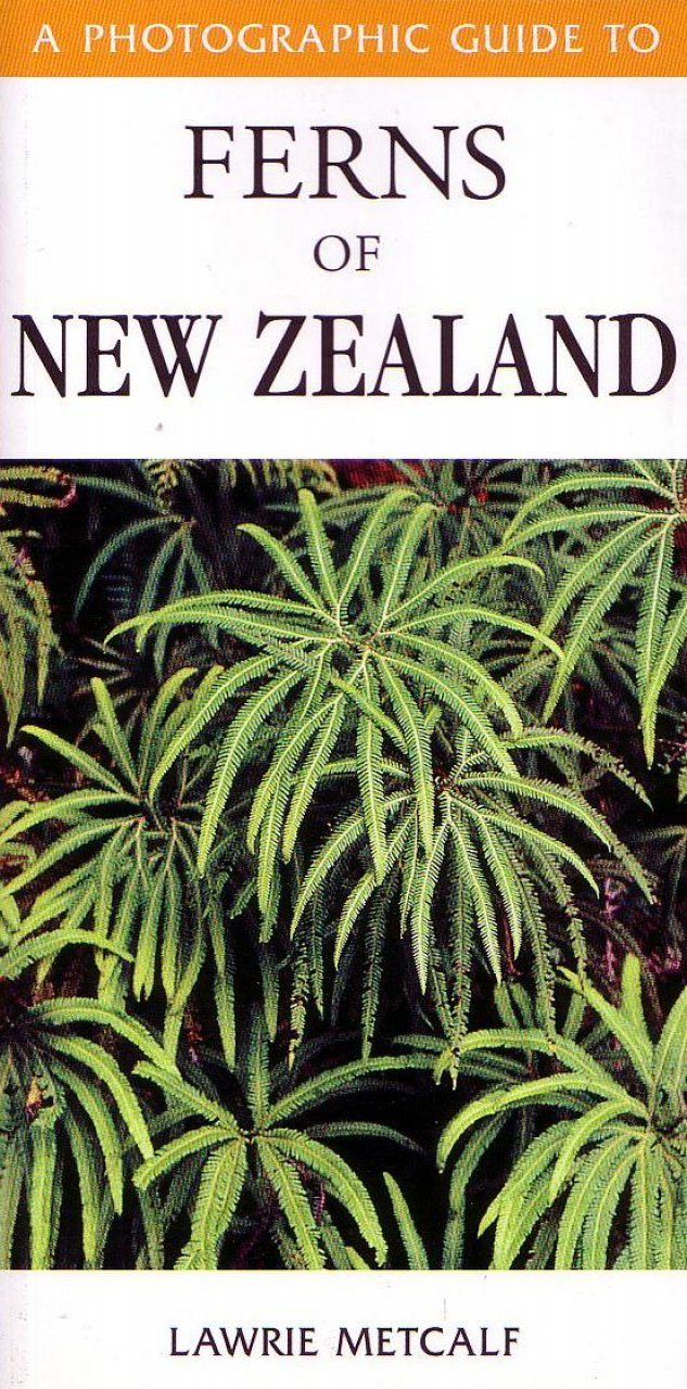 A Photographic Guide to the Ferns of New Zealand