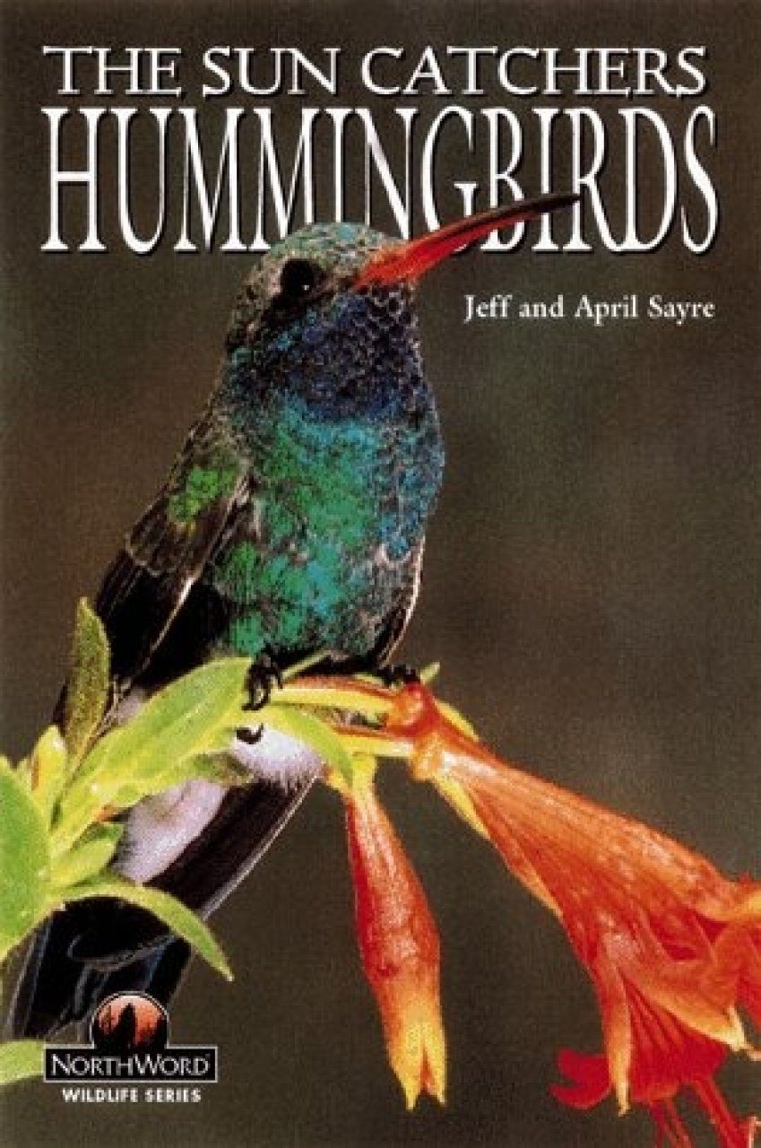 The Sun Catchers: Hummingbirds