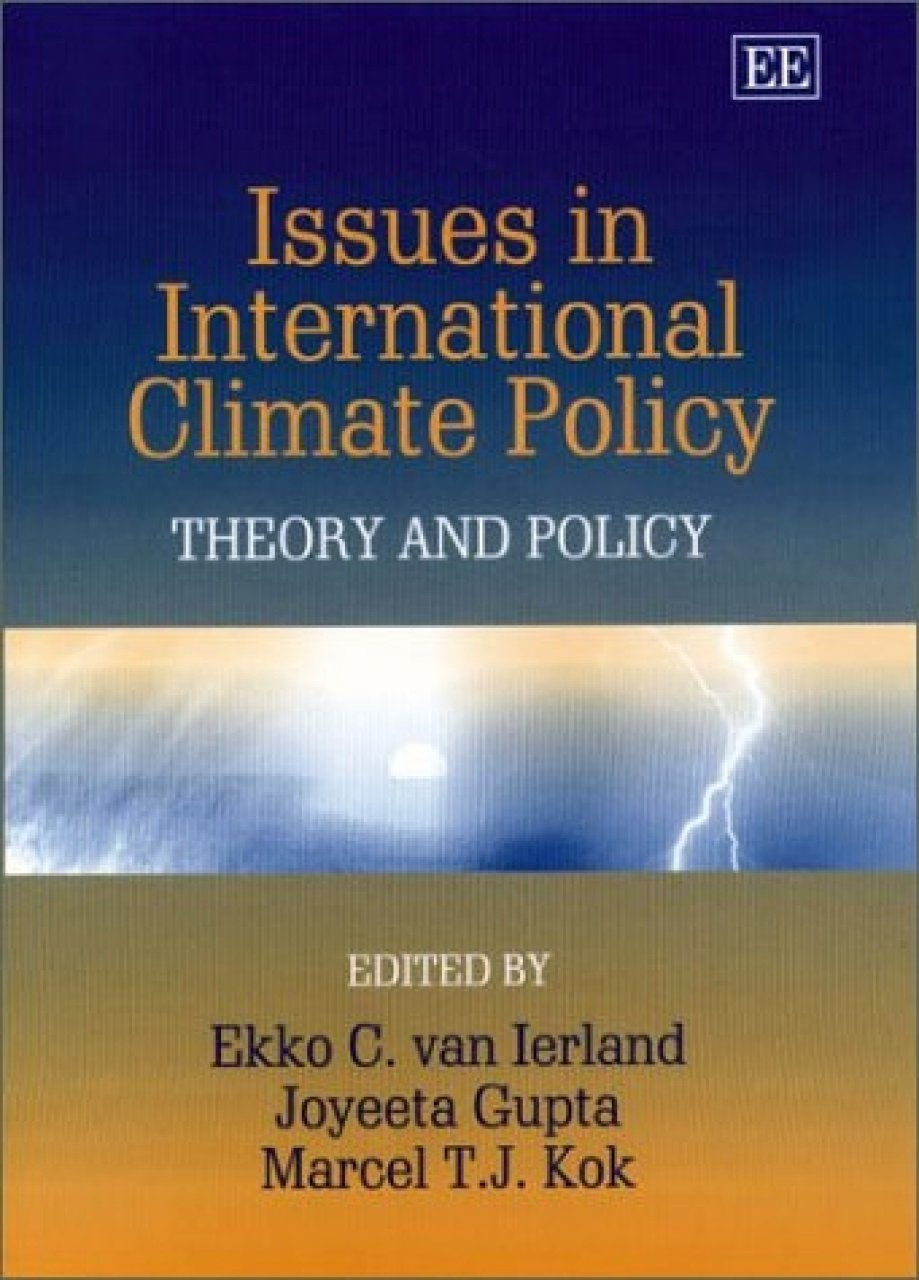 Issues in International Climate Policy