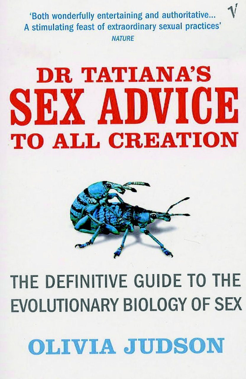 Sex advice to all creation