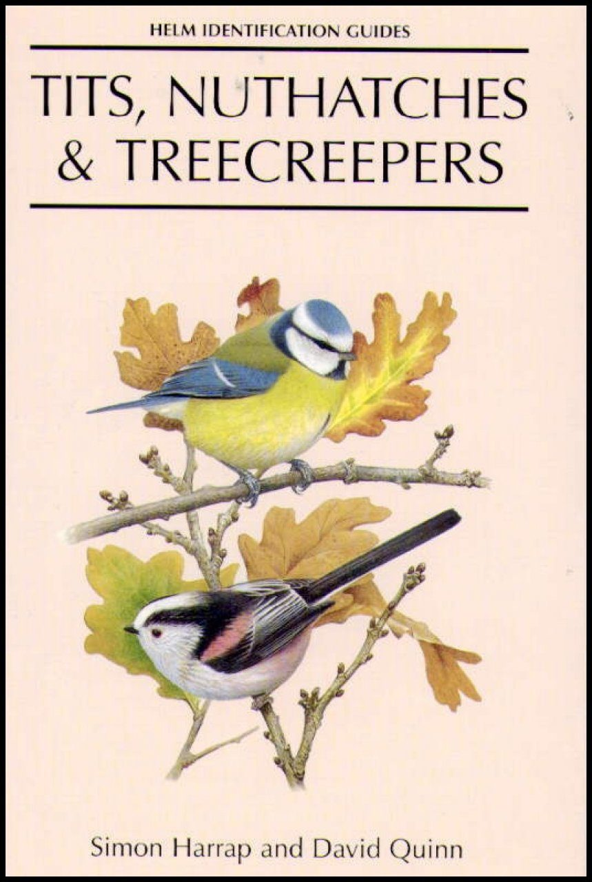 Tits, Nuthatches and Treecreepers: An Identification Guide