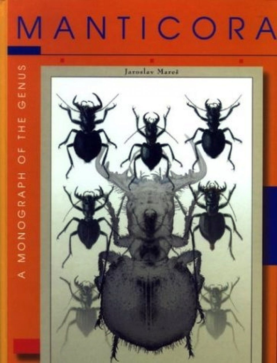 A Monograph of the Genus Manticora