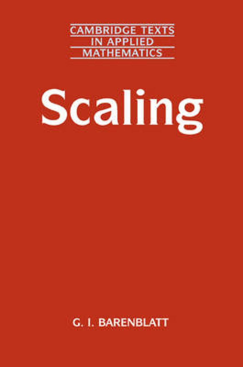 Scaling Phenomena
