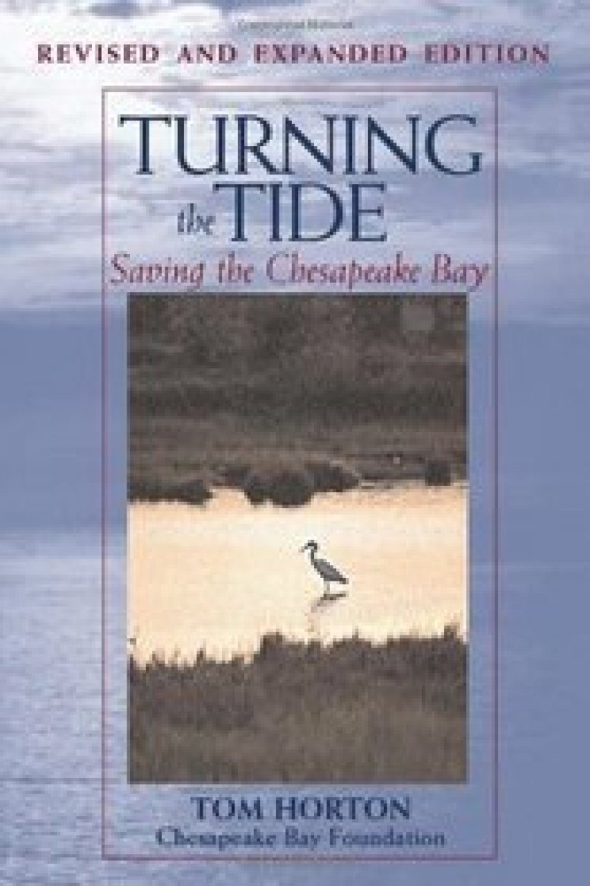 Turning the Tide: Saving the Chesapeake Bay