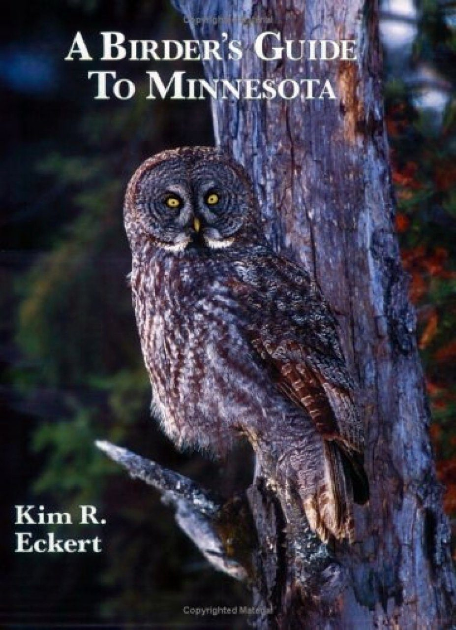 A Birder's Guide to Minnesota