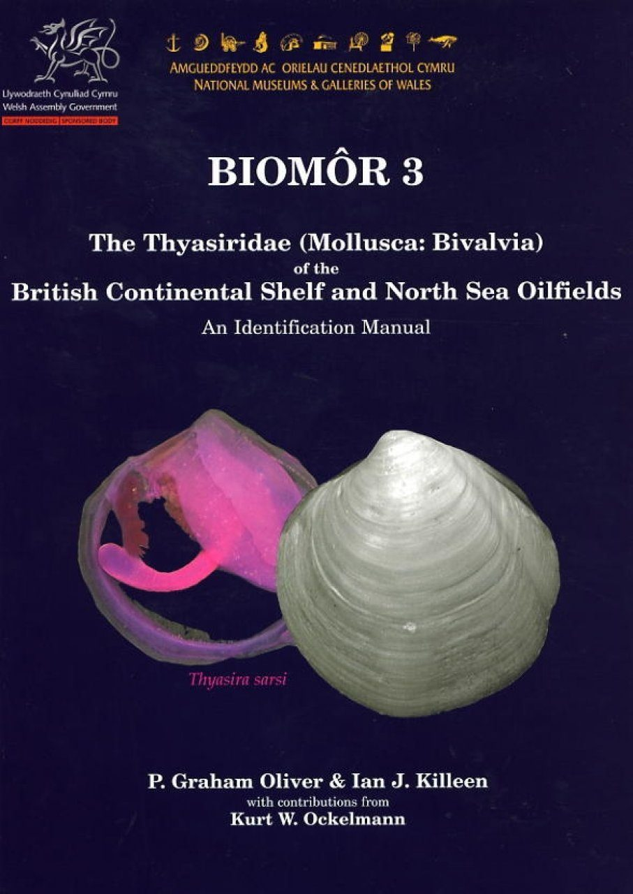 The Thyasiridae (Mollusca: Bivalvia) of the British Continental Shelf and North Sea Oilfields