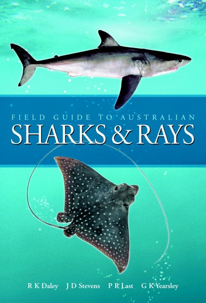 Field Guide to Australian Sharks and Rays