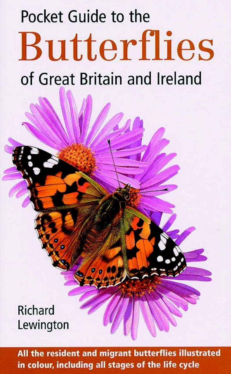 Pocket Guide to Butterflies of Great Britain and Ireland