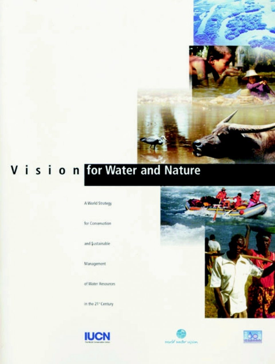 Vision for Water and Nature: World Strategy for Conservation and Sustainable Management of Water Resources in the 21st Century