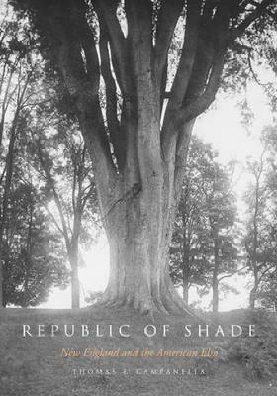 The Republic of Shade
