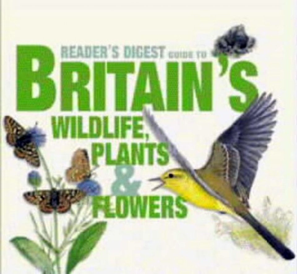 Britain's Wildlife, Plants and Flowers