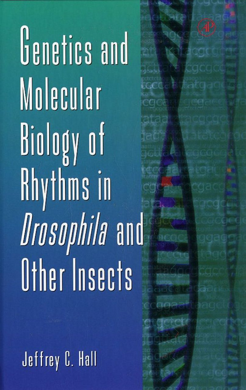 Genetics and Molecular Biology of Rhythms in Drosophila and Other Insects
