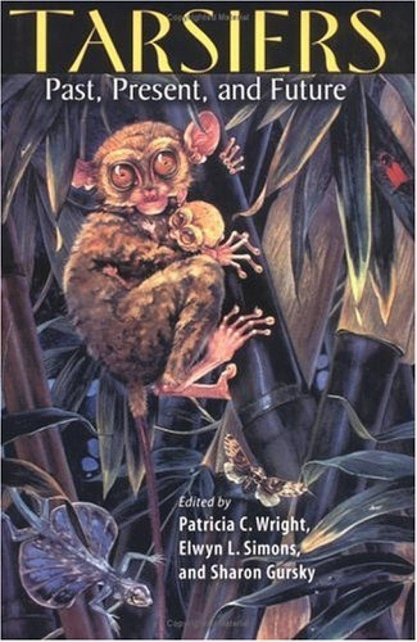 Tarsiers: Past, Present and Future