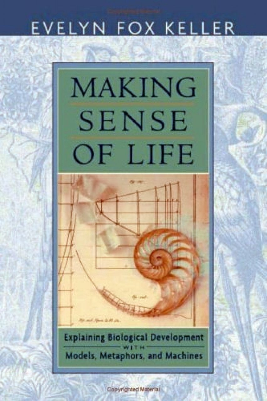 Making Sense of Life