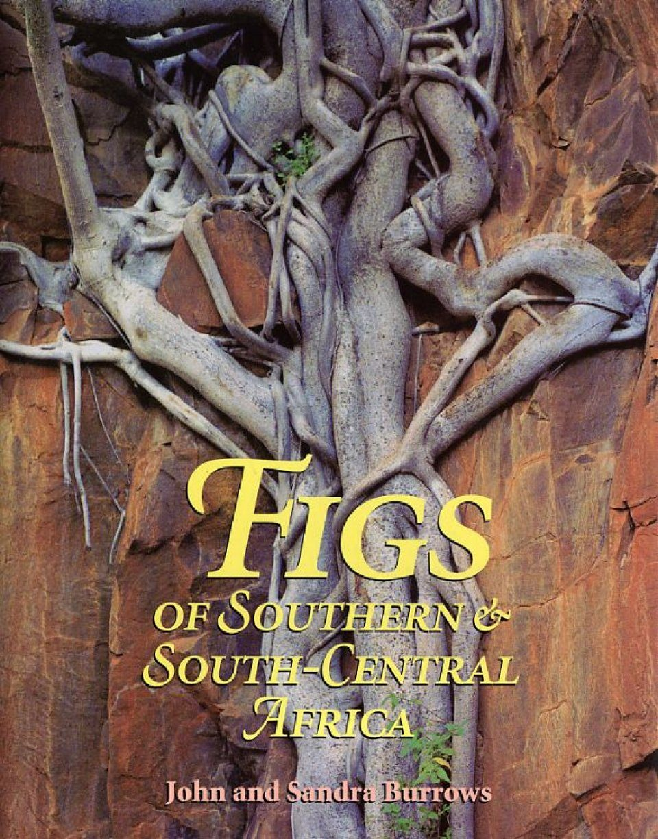 Figs of Southern and South-Central Africa