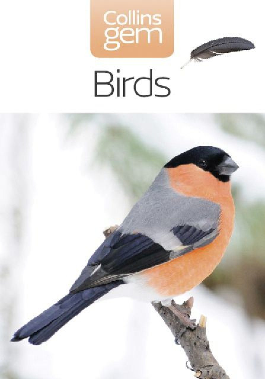 Collins Gem Guide: Birds