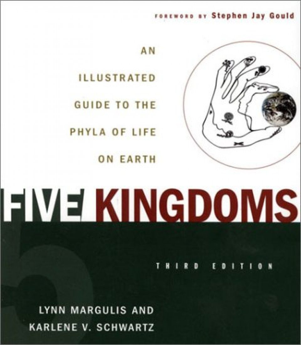 Five Kingdoms